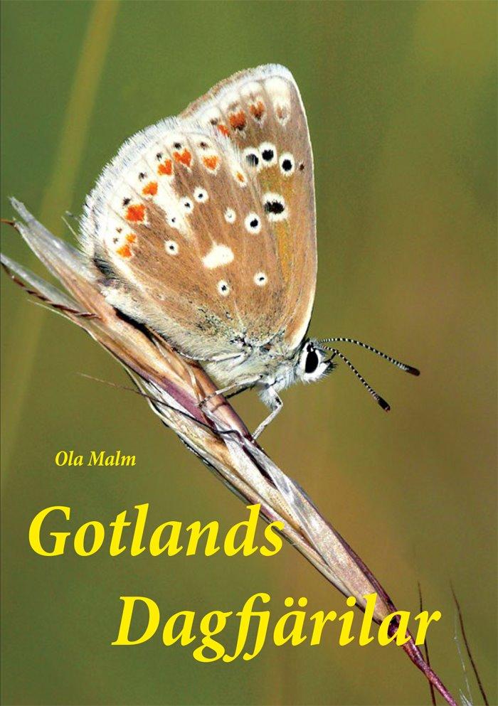 Gotlands dagfjärilar – boken