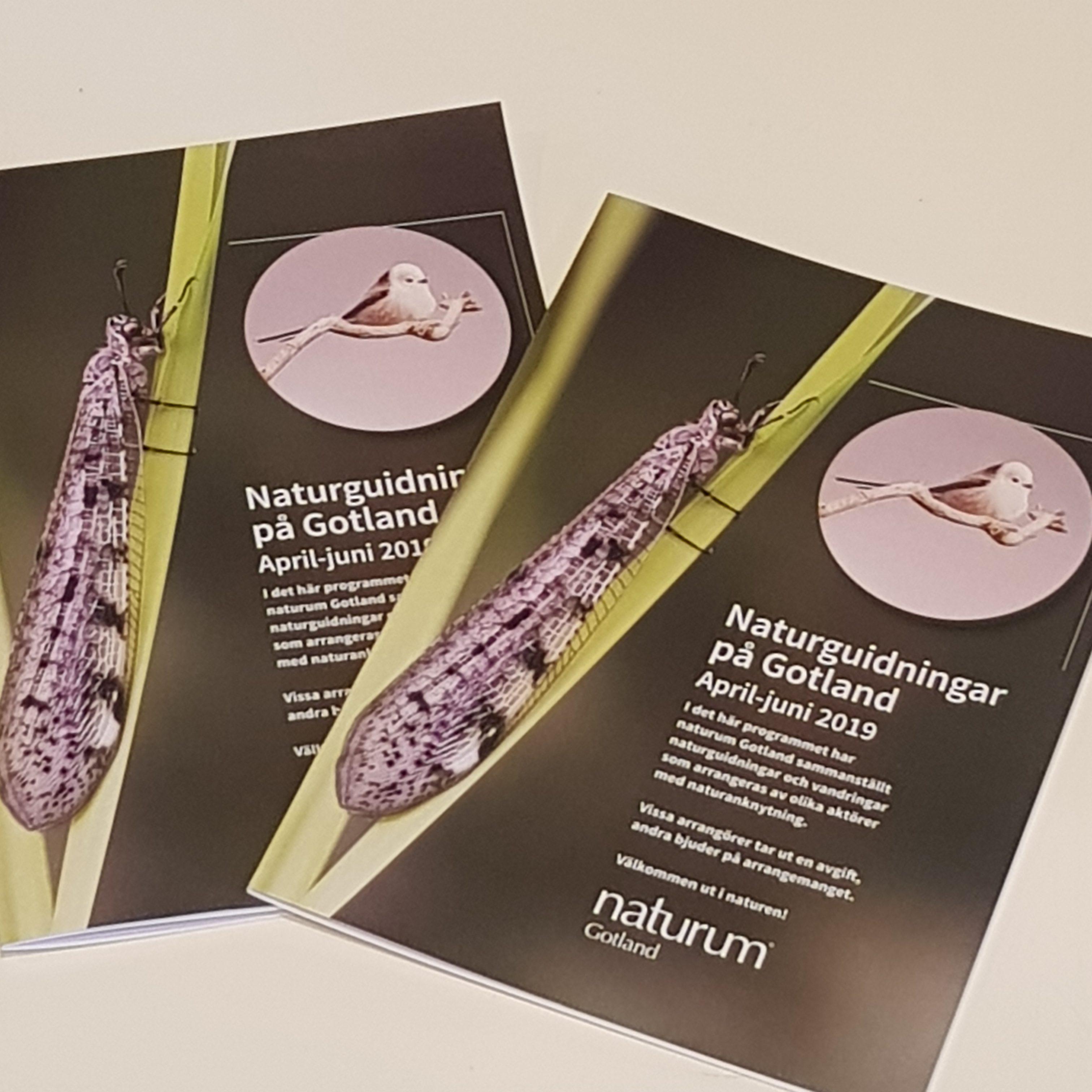 Naturguidningar på Gotland april – juni 2019