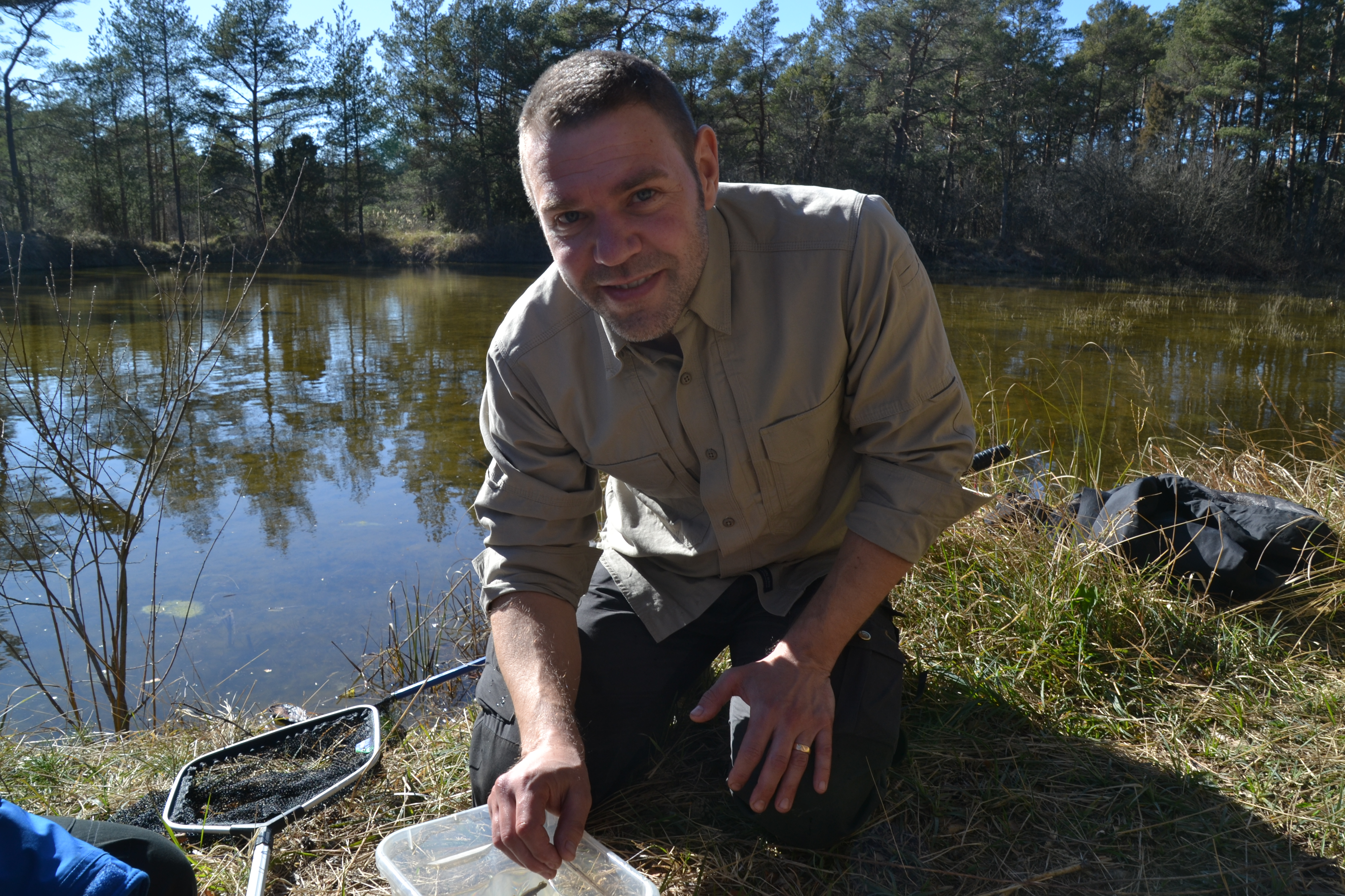En afton i dammen – en kortfilm om groddjur